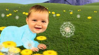 Baby Jake - Season 1, Episode 1 (Baby Jake Loves Playing Chase)