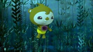 Octonauts - Season 3, Episode 13 (The Octonauts And The Urchin Invasion)