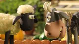 Shaun The Sheep - Season 4, Episode 25 (The Stare)