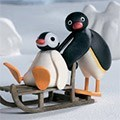 Pingu Family At The Wedding Party
